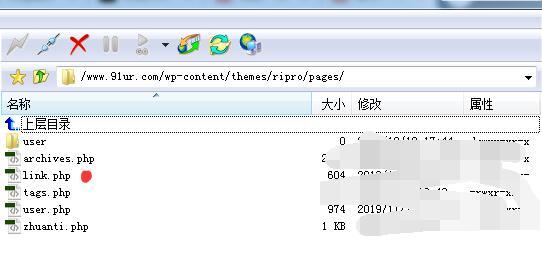 RIPRO日主题wordpress怎么增加页面模板