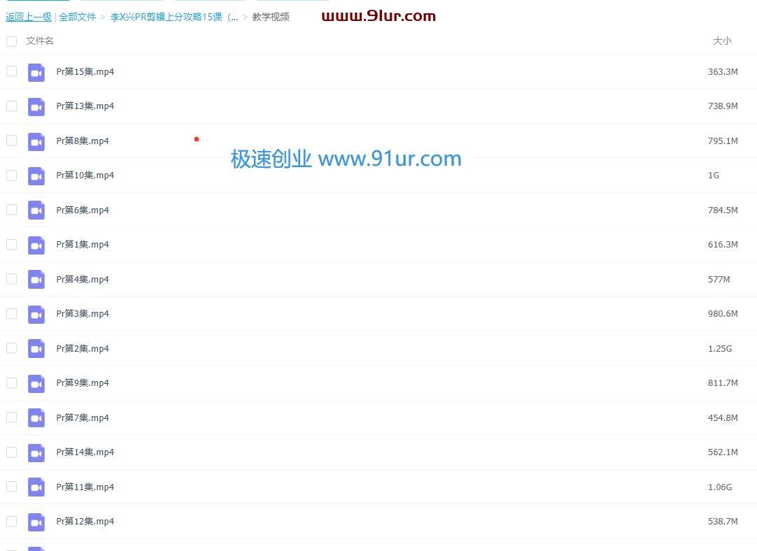 李兴兴PR剪辑上分攻略15课(含课件)#向天歌李兴兴的pr教程和素材0102